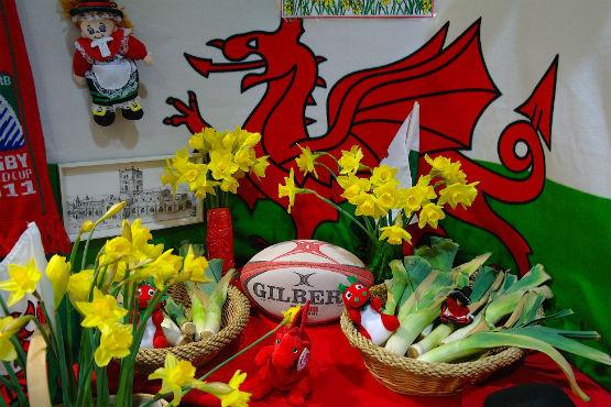 Wales Symbols