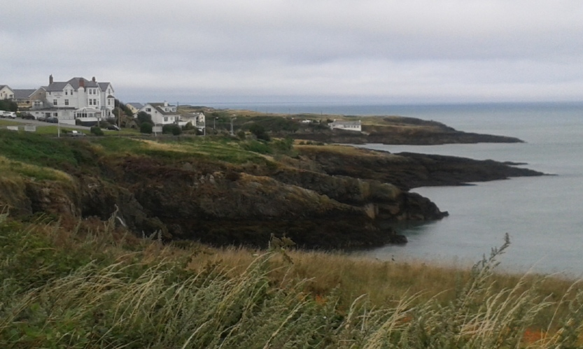 8Anglesey (65)