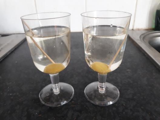 Martini (1)